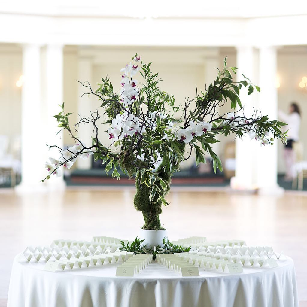 {escort table awesomeness} @yoonsbyun  #placecards #escorttable #manzanita #orchids #lovely #romantic #elegant #theknot #ballroomdecor #nofilter #nhweddingflorist #lotusfloraldesigns