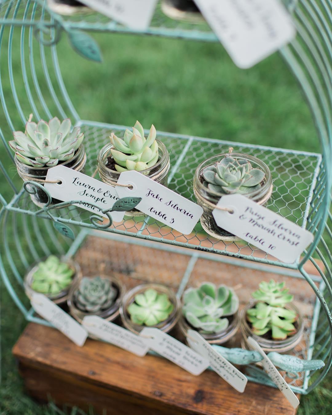 {succulents} @monpetitstudio  #succulents #placecards #favors #lovethis #woodland #nhwedding #theknotrealwedding #weddingflorist #lotusfloraldesigns