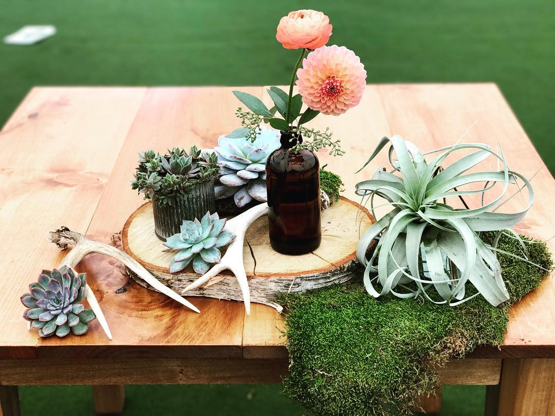 {sweethearts}  #sweethearttable #brideandgroomtable #hardyfarm #rustic #rusticwedding #antlers #succulents #airplants #dahlias #moss #lotusfloraldesigns #weddingflorist