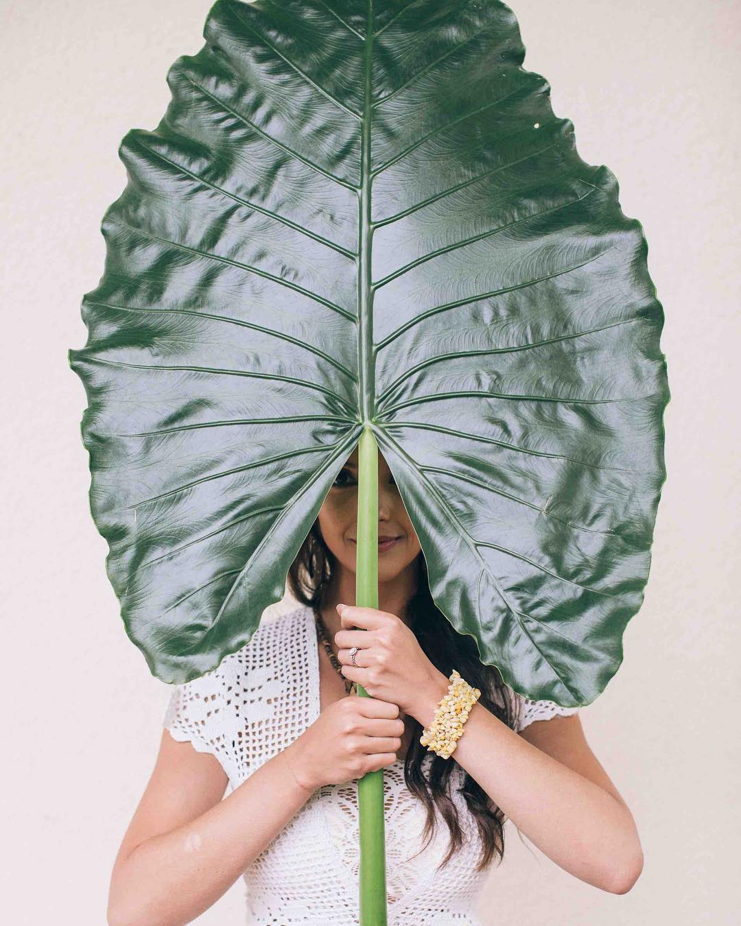 {big leaf} photo | @kate_preftakes . . . #clare #mymuse #tropicals #photoshoot #boho #forfun #peekaboo #lovethis #collaboration #lotusfloraldesigns #weddingflowers #flowerart #alocasia #elephantear