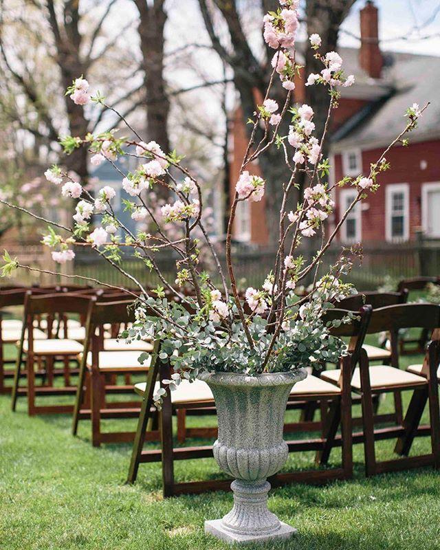 {spring blooms} photo | @kate_preftakes . . . #spring #cherryblossom #ceremonydecor #styledshoot #floweringbranches #simple #eucalyptus #aisle #springwedding #hancockinn #lovely #lotusfloraldesigns #eventsbysorrell #collaboration #nhweddings #lovethis