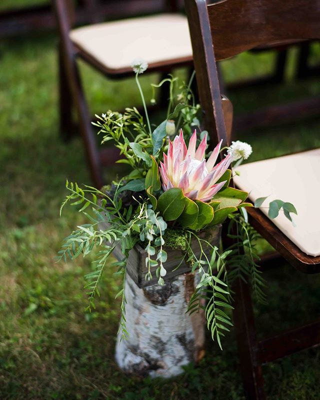 {protea} photo | @callanphoto . . . #aisledecor #aisle #herecomesthebride #protea #whitebirch #rustic #rusticdecor #rusticwedding #greenery #simpledesign #lessismore #lotusfloraldesigns #lovely