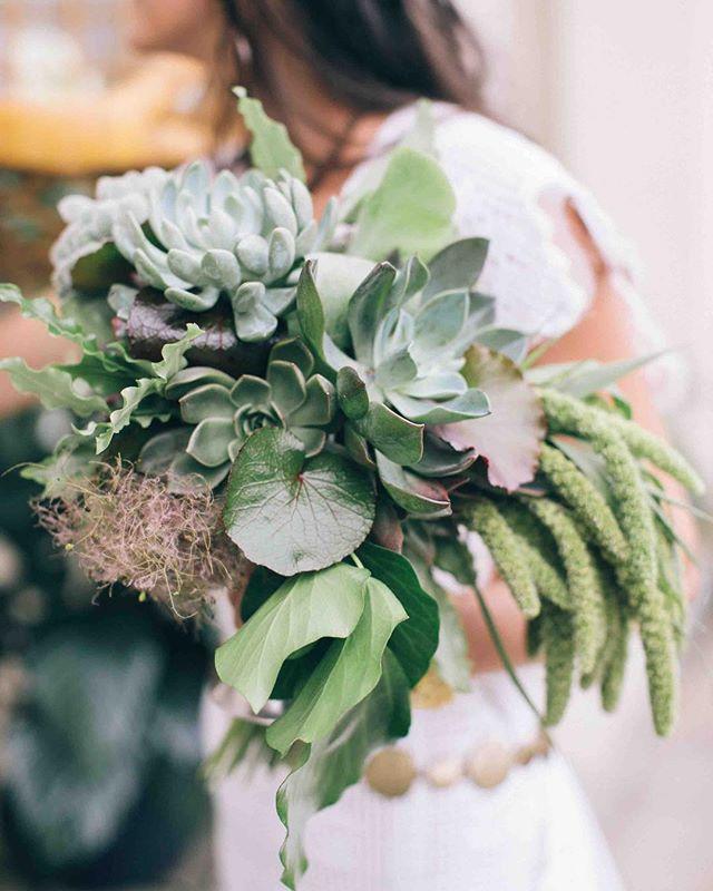 {succulents for days…} photo | @kate_preftakes . . . #succulents #succulentbouquet #bouquet #greenery #airplant #botanical #lovely #lotusfloraldesigns #weddingflowers #love