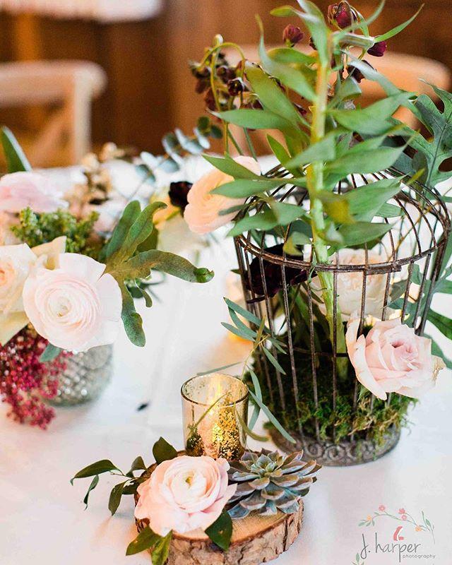 {whimsical} photo | @jharperphoto . . #centerpiece #tabledecor #prettyflowers #whimsical #rustic #barnwedding #nhwedding #birdcage #florals #weddingflowers #interesting #lotusfloraldesigns #lovely #barnonthepemi #privateweddingsandevents #jharper