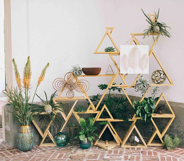 {eclectic•ness} photo | @kate_preftakes . . #decor #boho #geometricdesign #accent #eclectic #random #interesting #plants #foliage #greenery #florals #getcreative #lotusfloraldesigns #love