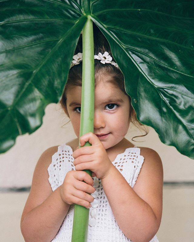 {peek-a-boo} photo | @kate_preftakes . . #flowerchild #flowergirl #peekaboo #silly #adorbs #bigleaf #funnygirl #bohobaby #bigbrowneyes #lotusfloraldesigns #styledshoot #collaboration #weddingstyle #love #cutie