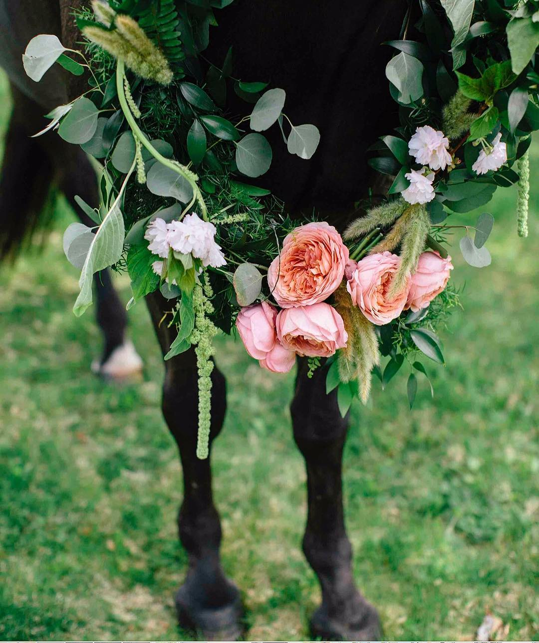 {wedding necklace} photo | @kate_preftakes  styling/coordination | @eventsbysorrell . . #horsedecor #horse #weddinghorse #handsome #necklace #floralwreath #forhim #weddingdesign #styledshoot #collaboration #flowerfun #weddingdecor #lotusfloraldesigns #weddingflowers #wedding #love