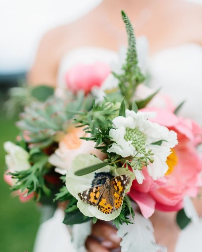 {that time @rodeoandcophoto captured this butterfly landing on the bride's bouquet during portraits???} . . #butterfly #bride #bouquet #hellolovely #weddingday #prettyflowers #amazingpic #surprise #unexpectedguest #portrait #lotusfloraldesigns #weddingdesign #love